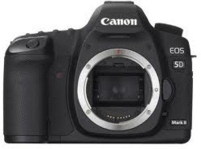Buy Canon EOS 5D Mark II DSLR Camera: Camera