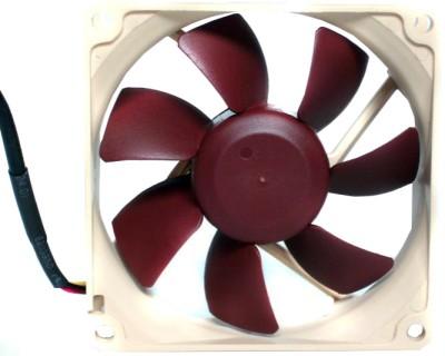 Buy Noctua NF-R8: Cooler