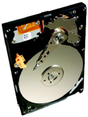 Buy Seagate Momentus 320 GB Laptop Internal Hard Drive (ST320LT022): Internal Hard Drive