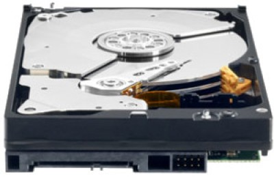Buy WD 2 TB Black Desktop Internal Hard Drive (WD2002FAEX): Internal Hard Drive