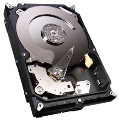Buy Seagate 250 GB Desktop Internal Hard Drive (ST250DM000): Internal Hard Drive