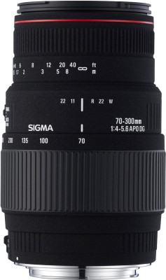Buy Sigma 70-300mm F4-5.6 APO DG Macro (Motorized for Nikon Digital SLR) Lens: Lens