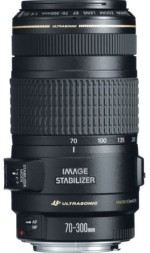 Canon EF 70 300 mm f/4 5.6 IS USM