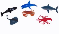 A2B Ocean Water Bodies Plastic Toy For Kids(Multicolor) (Multicolor)