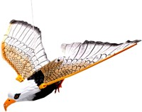 SJ FLY EAGLE BIRD STRING TO HANG Gift Battery Operated Toy (Multicolor)