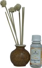 Asian Aura Asian Aura Diffuser Orange Liquid Air Freshener