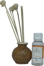 Asian Aura Asian Aura Reed Diffuser Tangerine Liquid Air Freshener