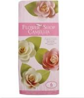 Tootpado Paper Camellia Flower Making Kit (FS06) - DIY Art And Craft Kits