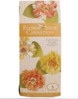 Tootpado Paper Carnation Flower Making Kit (FS05) - DIY Art And Craft Kits