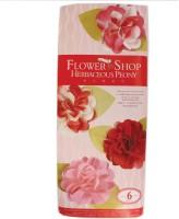 Tootpado Paper Peony Flower Making (FS01) - DIY Art And Craft Kits