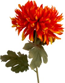 Flowers Forever Single Mum Orange Assorted Artificial Flower