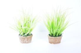 Home Decor Baby drecina Grass Arrangement Green Assorted Artificial Flower  with Pot