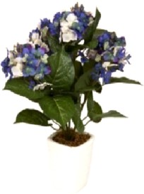 Flowers Forever Hydrangea Purple Assorted Artificial Flower with Pot