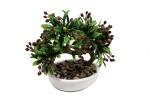 Lexuva Bonsai Artificial Plant with Pot
