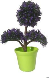KAYKON Bonsai Artificial Plant  with Pot