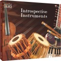 Musical Aura - Introspective Instruments: Av Media