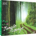 Musical Aura - Jungle Lounge: Av Media