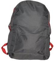 Everyday Desire 20 Ltrs Casual Bag Pack / School Bag / Multipurpose Travelling Bag - Grey 2.5 L Backpack Grey