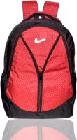 DZert Vila Polyester Light Weight School 26 L Backpack: Backpack