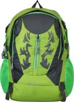 Pandora Full Size School Bag 30 L Backpack (Grey, Green)