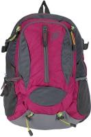 Novex Amor 30 L Medium Backpack (Pink, Size - 460)