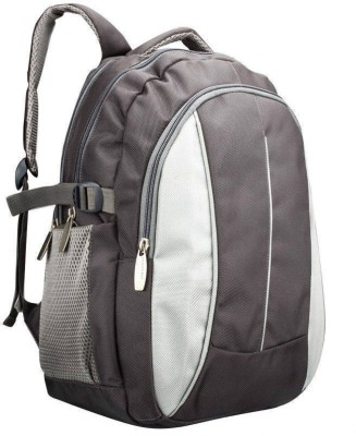 President President Snowball 22 L Backpack (Grey)