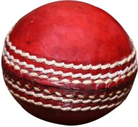 Priya Sports 2825A Cricket Ball - Size: 5, Diameter: 2.24 Cm (Pack Of 1, Red)
