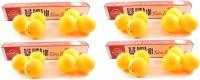 Blue Shield 101 Ping Pong Ball -   Size: Standard,  Diameter: 4 Cm (Pack Of 24, Orange)