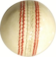 Whimsical Sports Leather Ball- Pack Of 2 Cricket Ball -   Size: 5,  Diameter: 22.4 Cm (Pack Of 2, White)