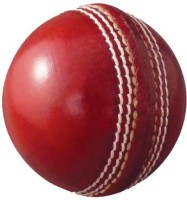 Whimsical Sports Swift Cricket Ball -   Size: 5,  Diameter: 22.4 Cm (Pack Of 1, Red)