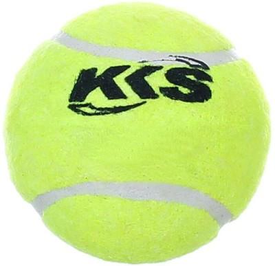 KKS Faster Poplar Willow Cricket  Bat (Short Handle, 500 g)