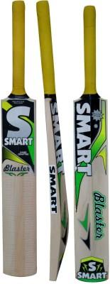 RUDRA BLASTER Kashmir Willow Cricket  Bat (34 inch, 1100-1250 g)