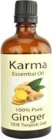Karmakara Ginger Oil 100ml (100 Ml)