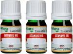 Natura Jatamansi Natural Essential Oil pack of 3