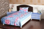 Aalidhra Polyester Silk Blend Floral Single Bedsheet