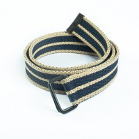 Chisel Men Casual Blue, Beige Canvas Belt Blue, Beige
