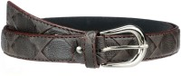 Allura Women Evening/Party, Casual, Semi-formal Brown Synthetic Belt Brown