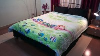 Jojo Designs Cartoon Double Quilts & Comforters Green 1 Quilt