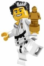 LEGO Blocks & Building Sets 8684