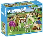 Playmobil Blocks & Building Sets Playmobil Paddock with Horses and Foal