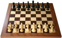 Triumph By Kay Kay 12 Inch With 2.5 Inch Coin 12 Inch Chess Board (Multicolor)