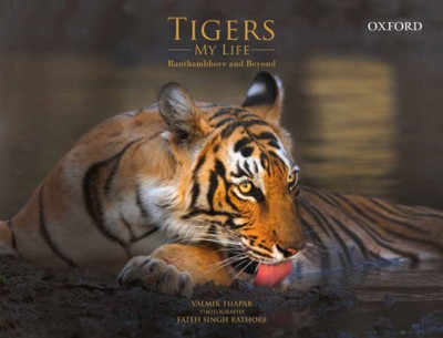 Tigers: My Life Ranthambhore and Beyond price comparison at Flipkart, Amazon, Crossword, Uread, Bookadda, Landmark, Homeshop18