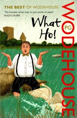 What Ho! price comparison at Flipkart, Amazon, Crossword, Uread, Bookadda, Landmark, Homeshop18