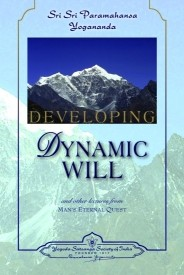 Developing Dynamic Will (English) 1st Edition (Paperback)