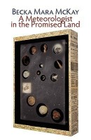 A Meteorologist in the Promised Land (English): Book