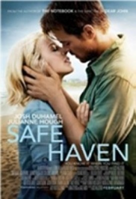Buy Safe Haven: Book