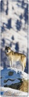 That Company Called If National Geographic - Gray Wolf 3D Bookmark (National Geographic, Multicolor)