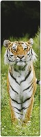 That Company Called IF National Geographic - Siberian Tiger 3D Bookmark (National Geographic, Multicolor)