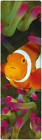 That Company Called IF National Geographic - Clown Anemonefish 3D Bookmark Bookmark (National Geographic, Multicolor)