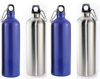 Shree Shop Alflask 750 Ml Flask (Pack Of 4, Silver, Blue)